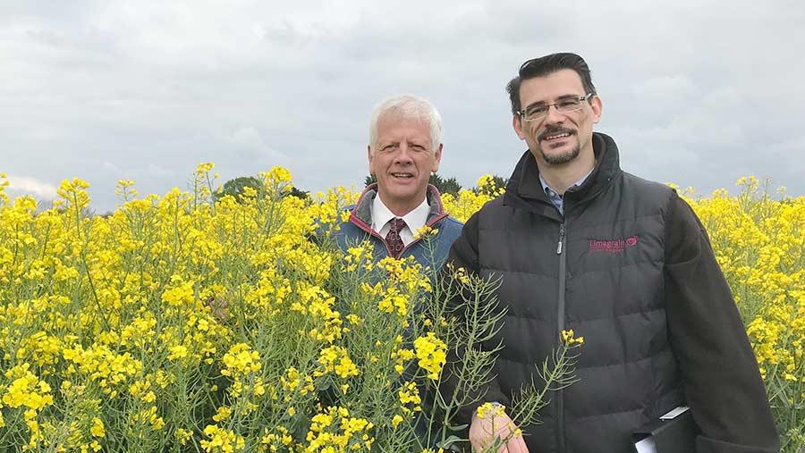 David Leaper (left) and Vasilis Gegas in a crop of Ambassador OSR