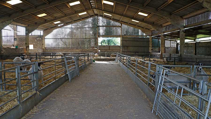 Sheep shed at Church Farm