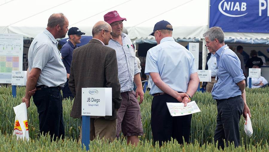 Visitors look at crop plot at Cereals 2018