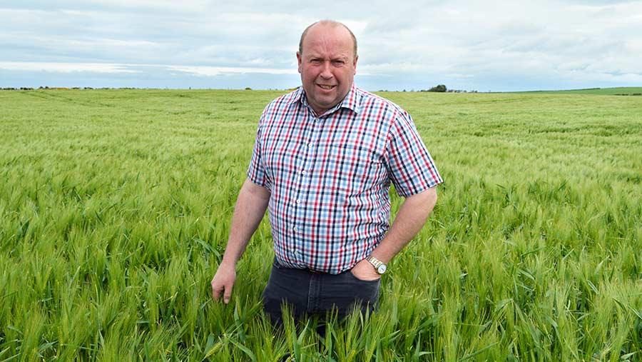 Iain Green in crop of Laureate spring barley