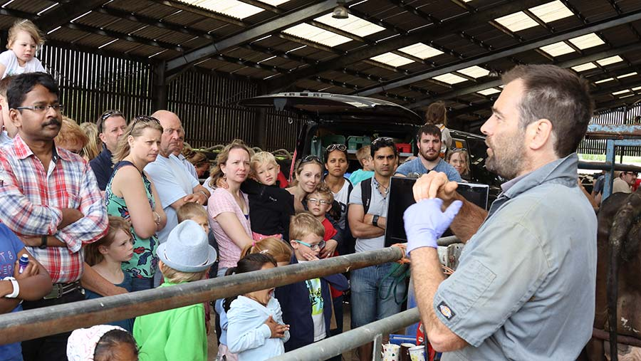 Crowd at Open Farm Sunday