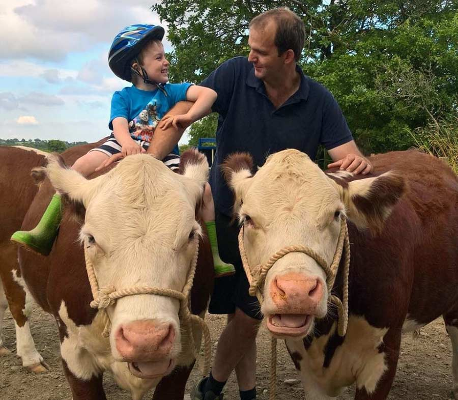 Father and son with Herefords