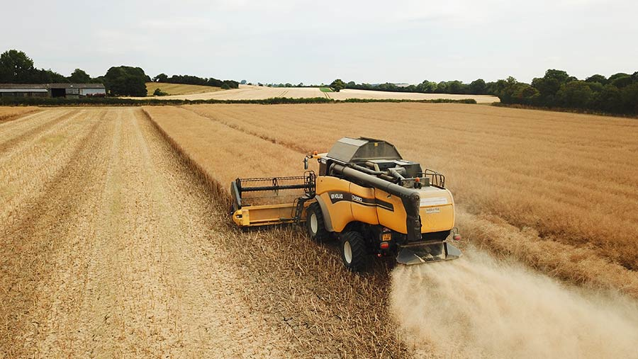 A combine in an OSR crop