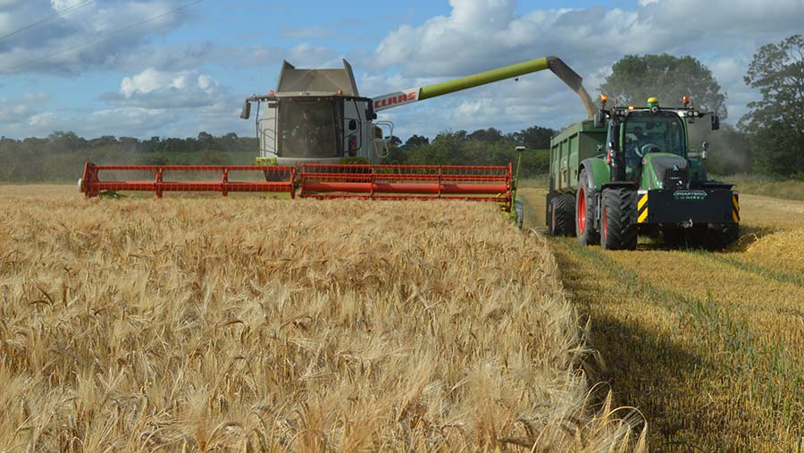 Winter barley being harvested