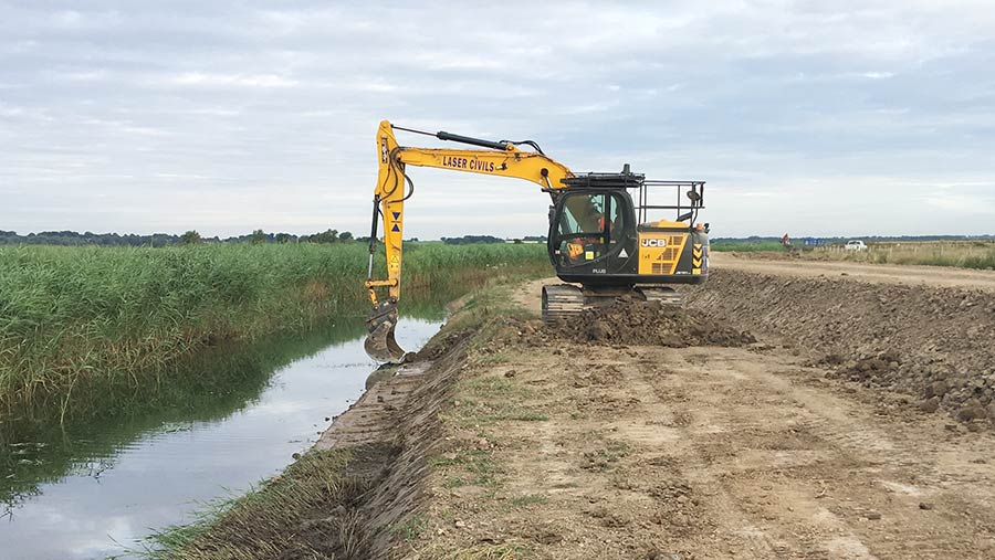 Creating berm for reed to grow on to help vegetation establishment for water vole