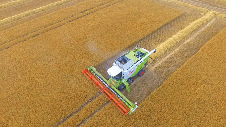 Aerial view of a combine at work