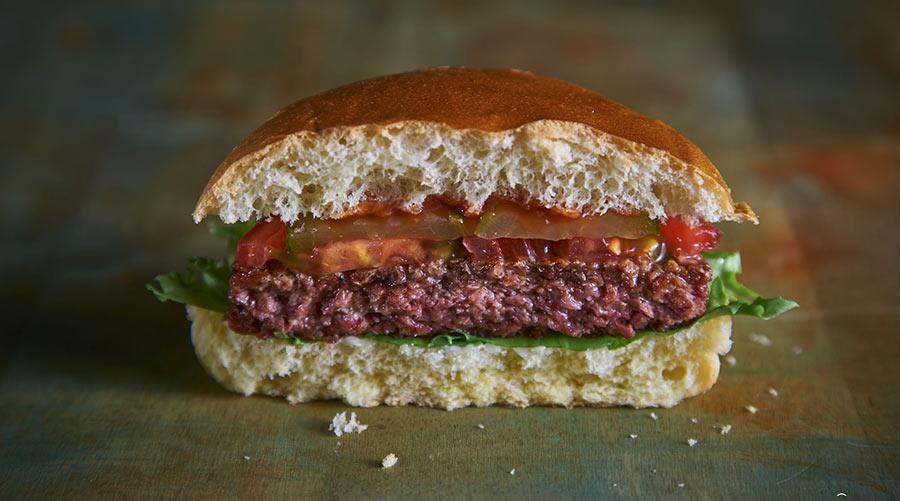 A fake meat burger engineered in a laboratory © Tim Stewart News/Shutterstock