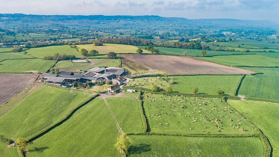 Hamwood Farm