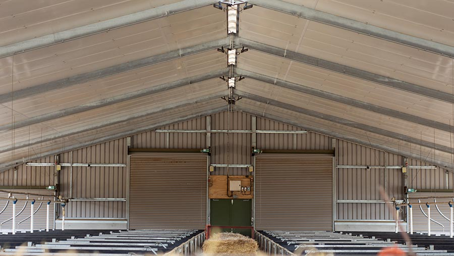 inside of pig stable