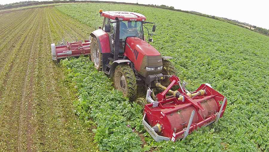 A tractor with a front and rear potato flailing attachment
