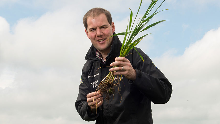 Scott Campbell  holding wheat plant