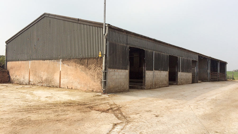 An old dairy shed
