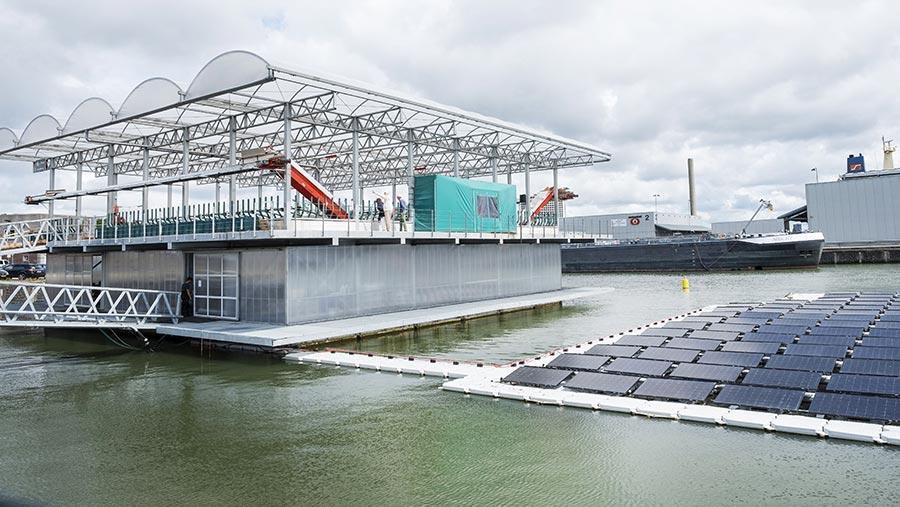 the floating farm in Holland © Hollandse Hoogte/Shutterstock
