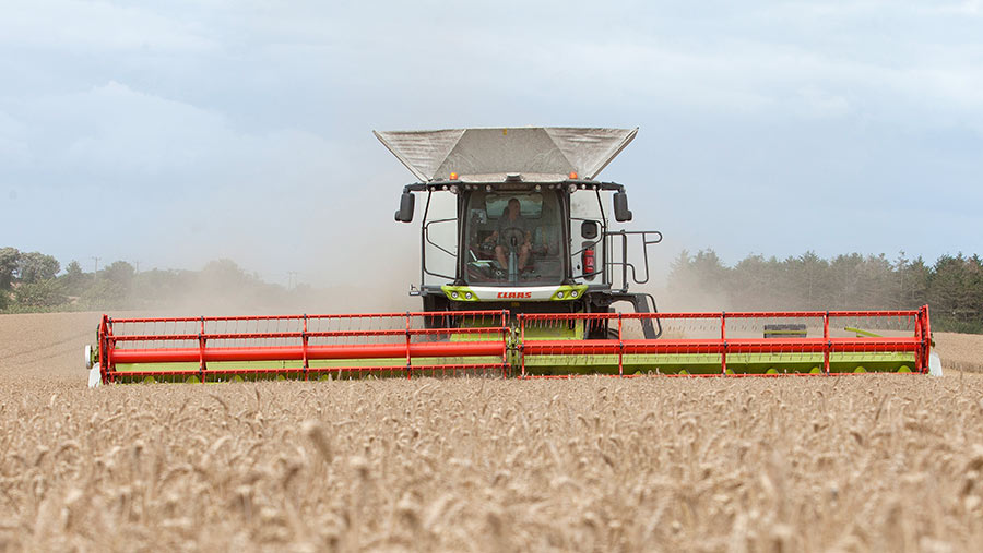 Claas Lexion combine in field