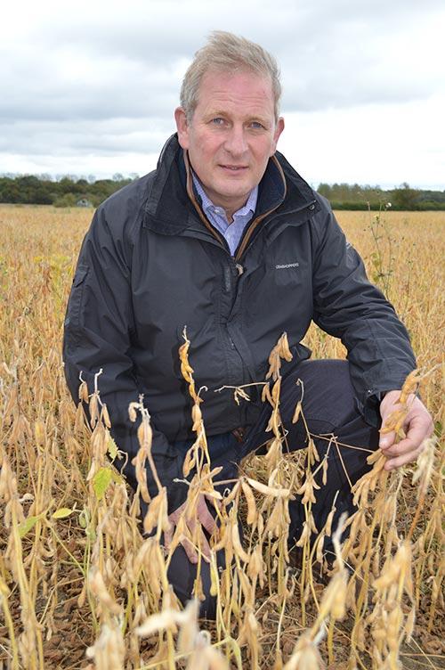 Farmer Matt Broadhurst in a soya bean field