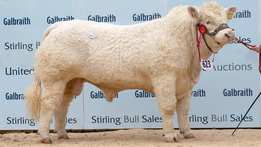 Goldies Oasis: 23,000gns