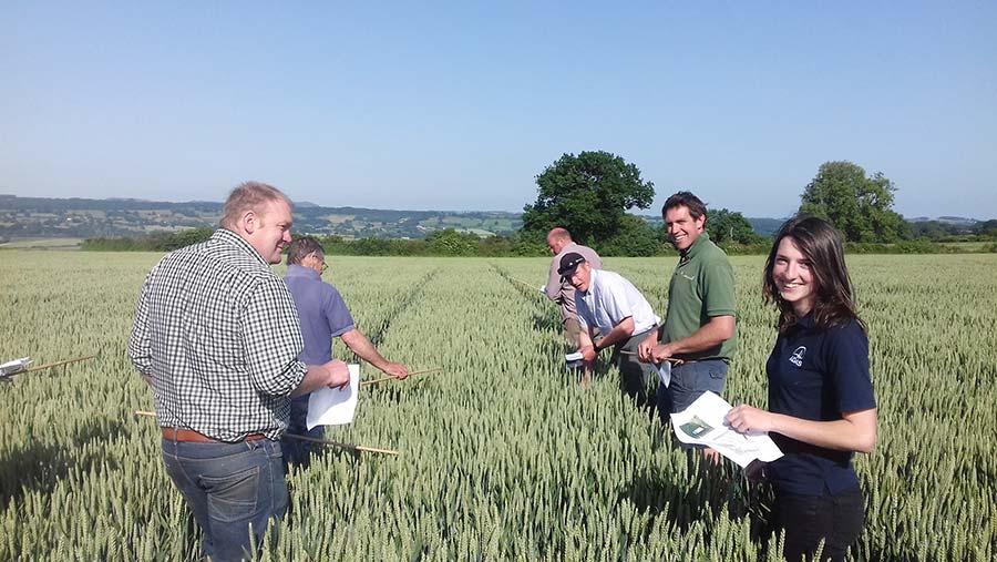Adas fungicide challenge