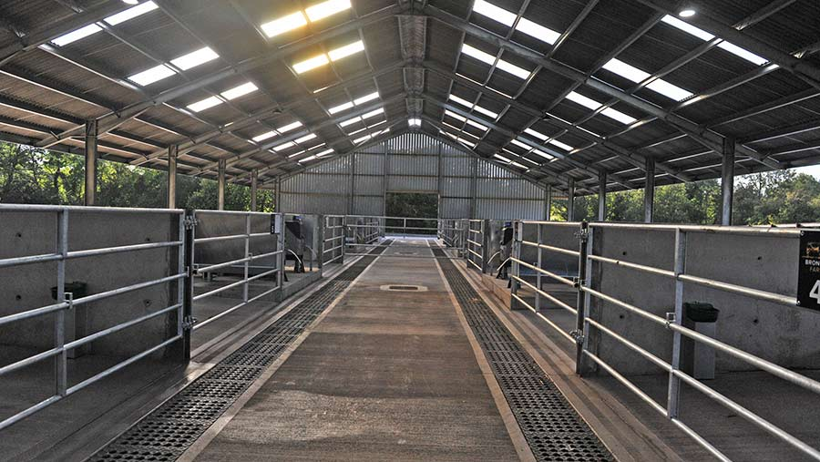 Inside of calf rearing shed