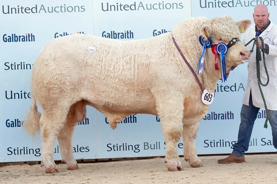 Coolaslee Oreo: 12,000gns
