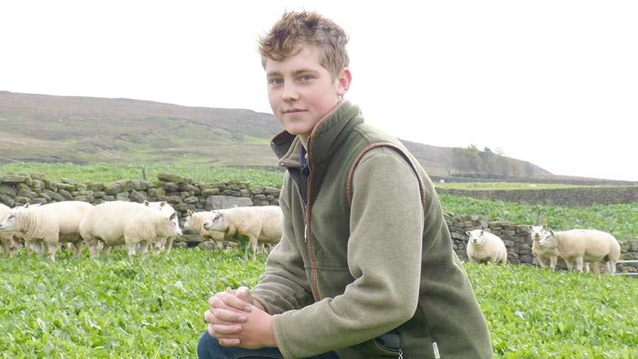 Will Findlay in field with sheep in the distance