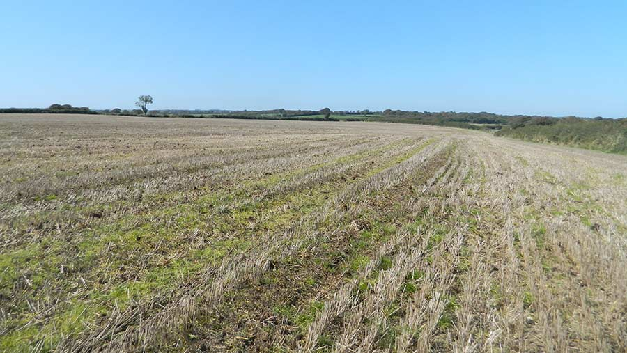 Land at Culsworthy