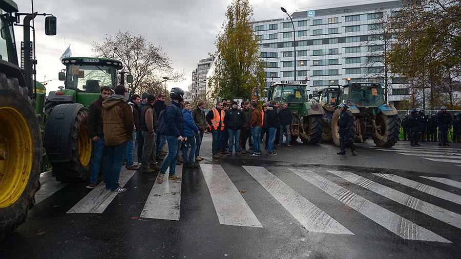 Farmer protestors walking across a zebra crossing