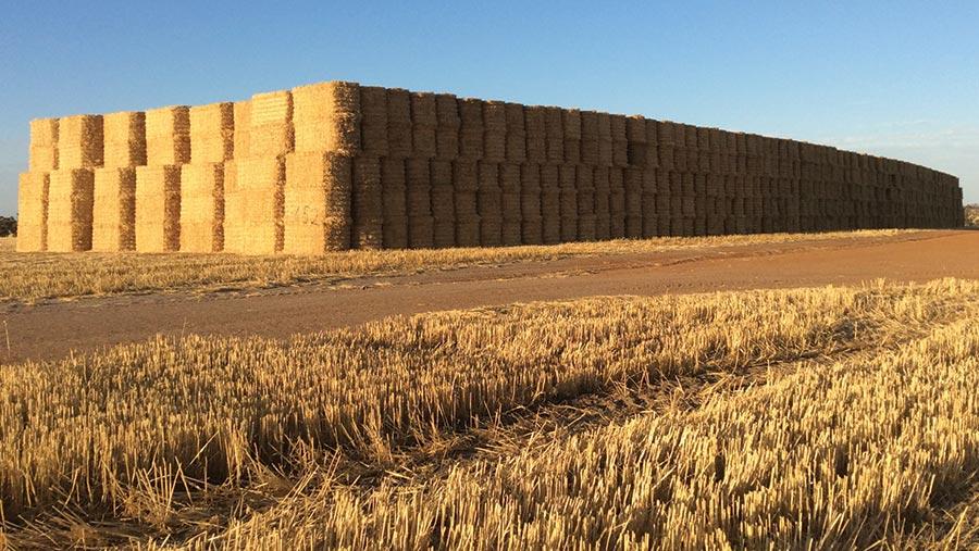 Bale stacks