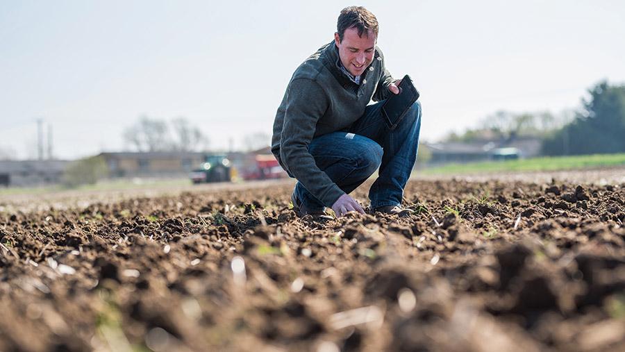 Richard Ling inspecting soil