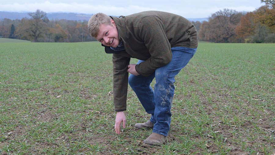 Tom Carr in field with winter wheat