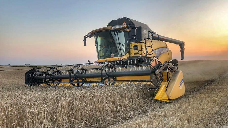 Harvesting wheat at Mark Stubbs' farm
