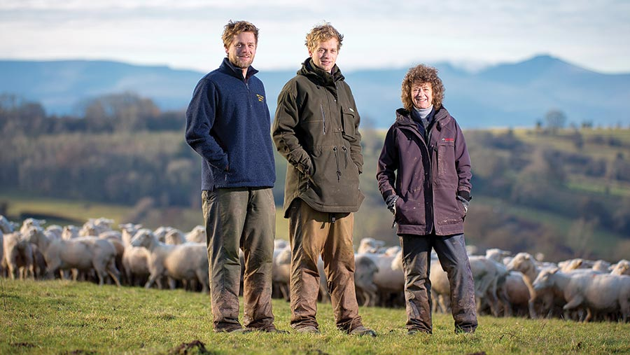 Penny Chantler and her sons, William and Sam Sawday standing in a field with sheep