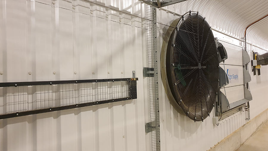 Ventilation fan inside the poultry unit