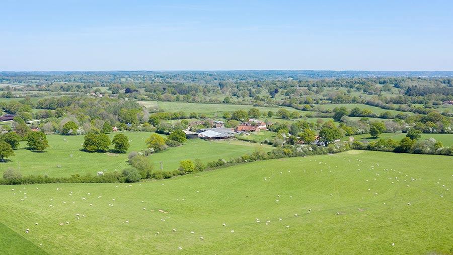 Elm Farm