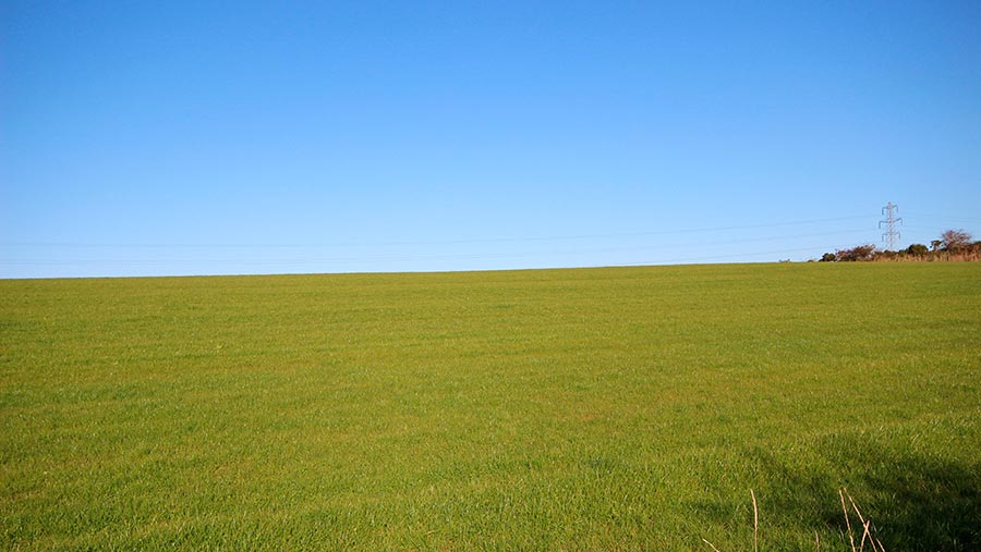 Wide expanse of farmland with a clear blue sky