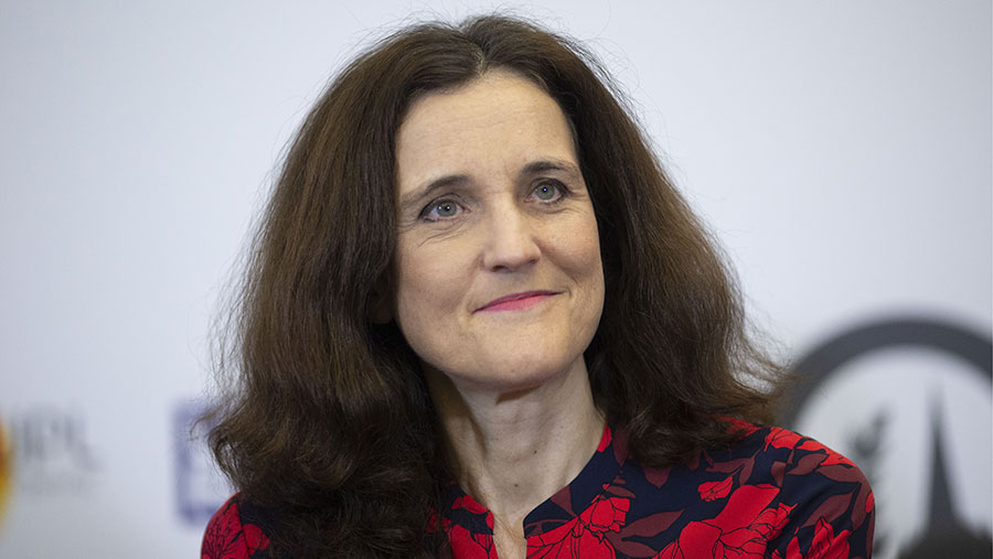 Theresa Villiers © DAVID HARTLEY/Shutterstock