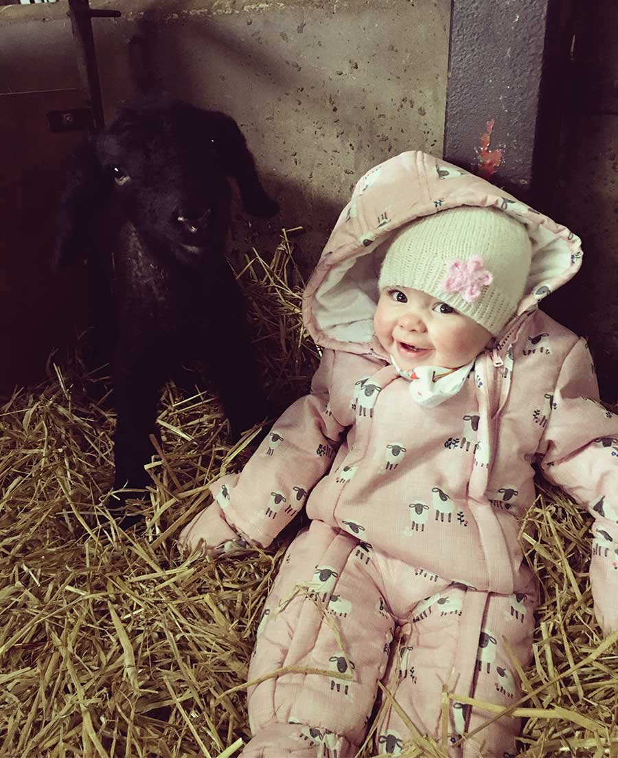 Baby sitting with lamb
