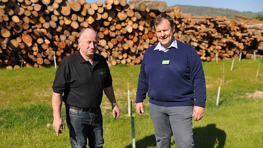 Huw Owen and Geraint Jones in front of a timber stack