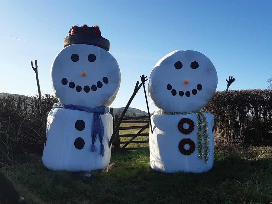 Two snowmen in field