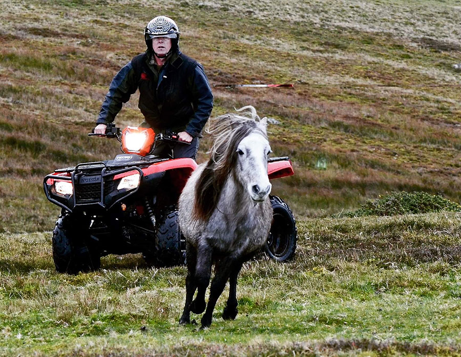 Gareth Wyn Jones driving an ATV wearing a helmet, with horse in foreground
