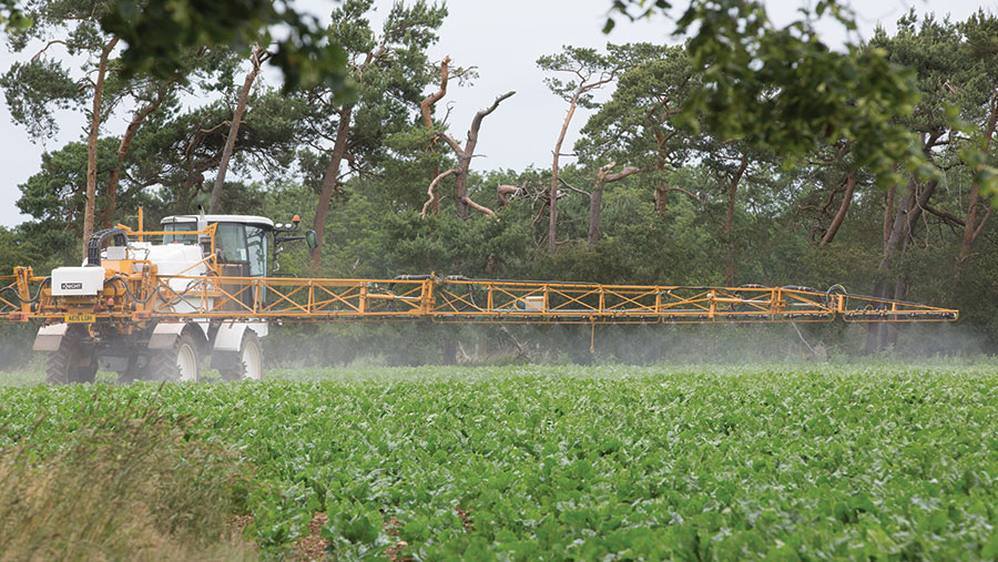 Sprayer applying chemical to beet crop