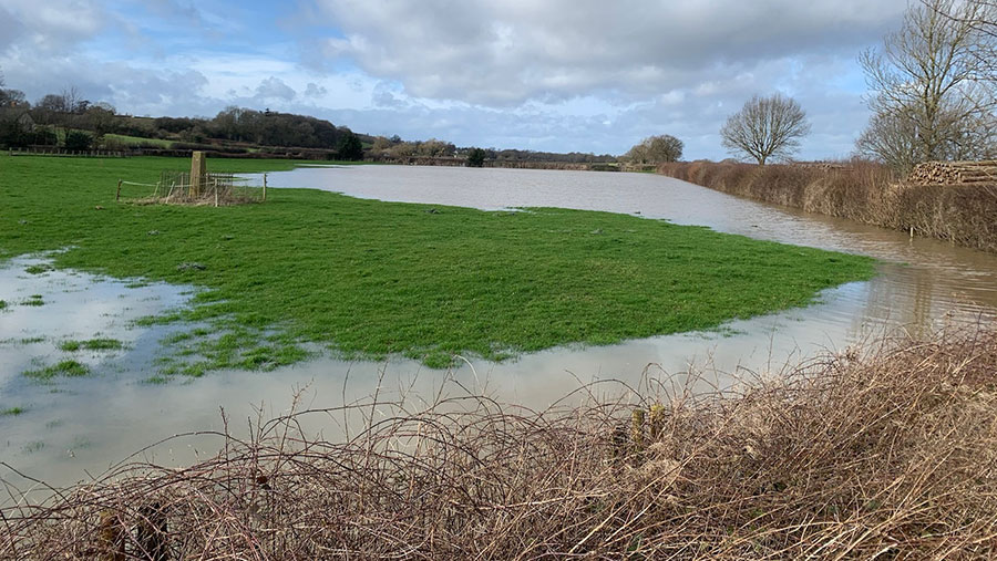 Robert Price's flooded fields