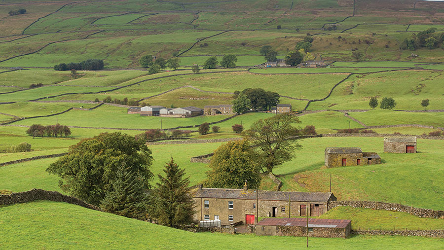 More farmers are capitalising on opportunities beyond agriculture - including rural tourism © Tim Scrivener