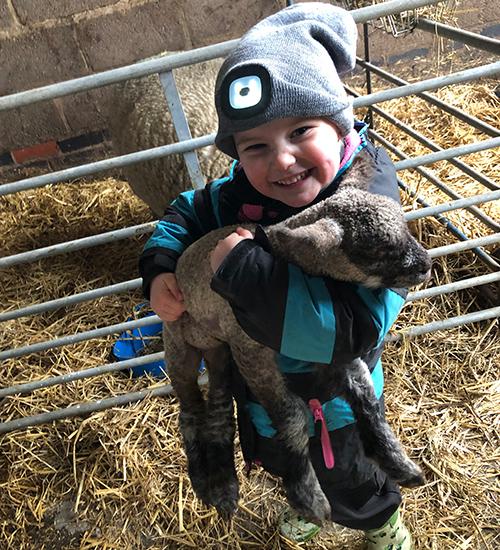 Little girls holding lamb