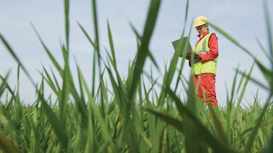 Surveyor with a laptop