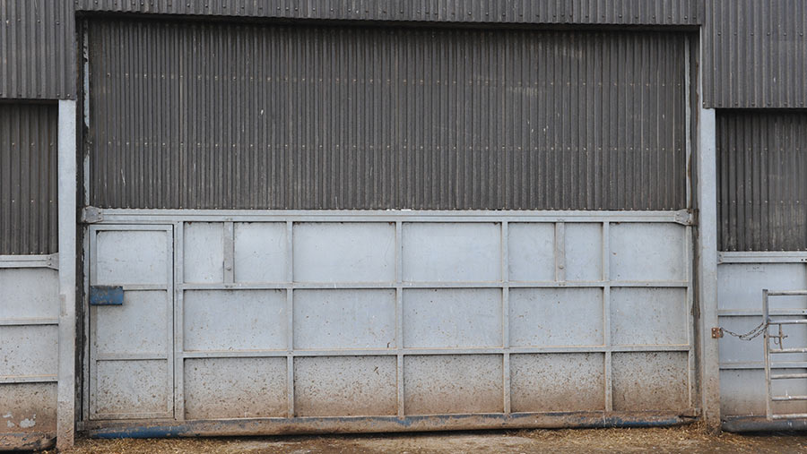 Automatic doors of dairy shed