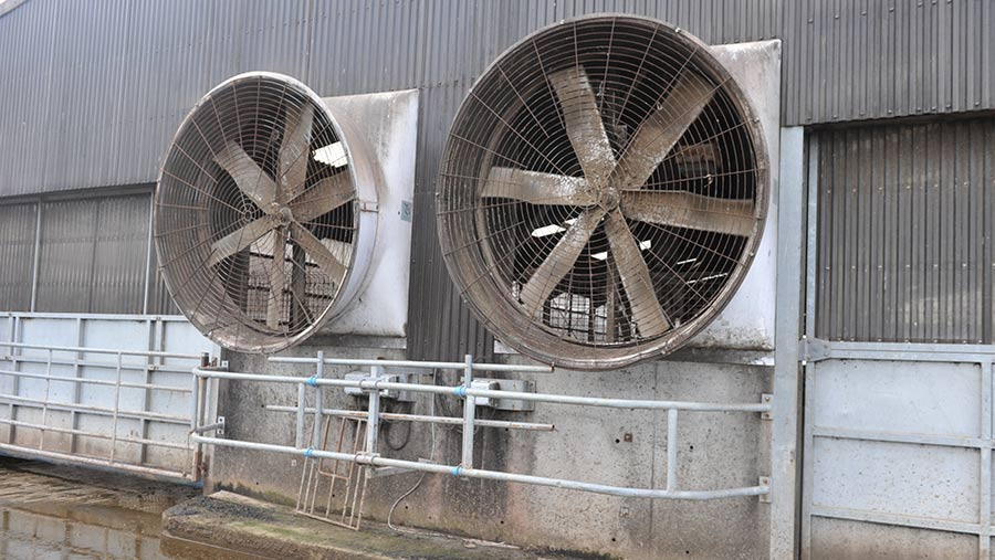 Fans in shed