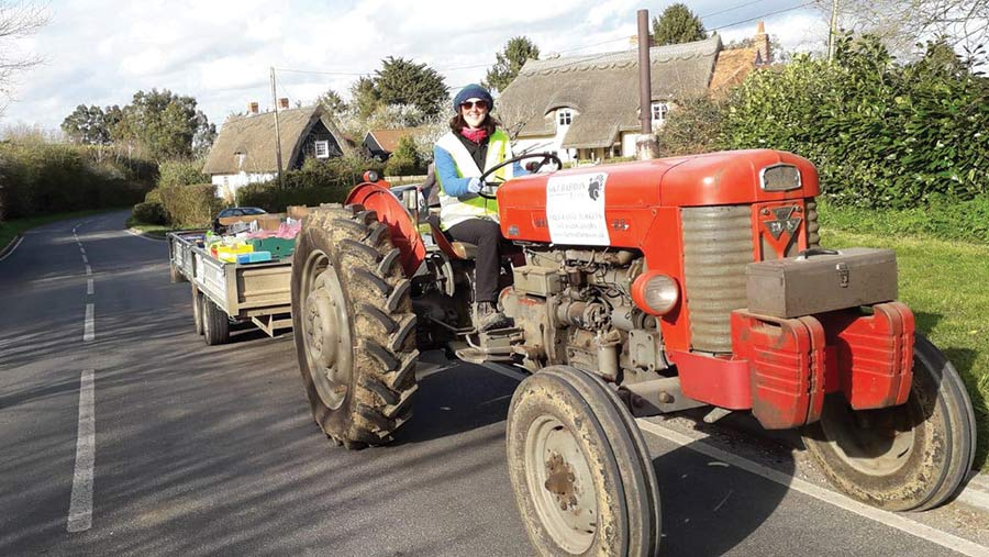 Sarah Barron on a delivery run with the 1963 Massey © G & J Barron Farms
