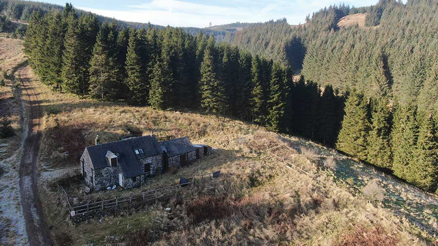 Whiteburn Forest house surrounded by forest