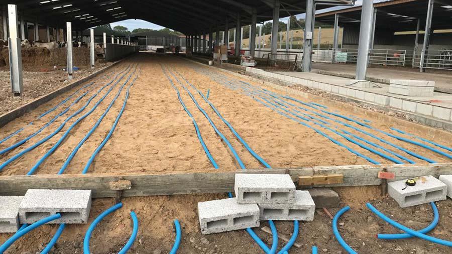 Underfloor heating in cow shed