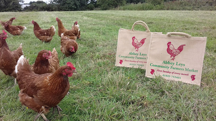 Chickens in field with farmers market bags